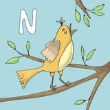 Illustrerad alfabetbokstav N och näktergal Tecknad film för vektor för abcbokbild Näktergalet sjunger på en trädfilial vektor illustrationer