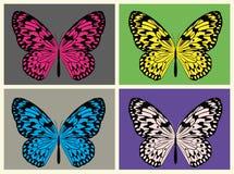 Illustrerad uppsättning av vektorn för fyra den färgrika risfjärilar royaltyfri illustrationer