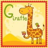 Illustrerat alfabetbokstavsG och giraff. Arkivfoto