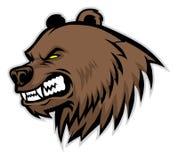 Ilsken björnhuvudmaskot Fotografering för Bildbyråer