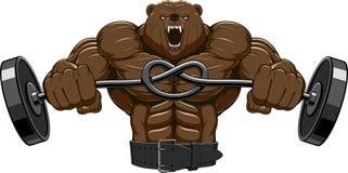 Ilsken björnhuvudmaskot Arkivfoto