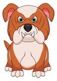 Ilsken färg för brunt för tecken för maskot för bulldogghundtecknad film Vektorillustration som isoleras på vit bakgrund stock illustrationer