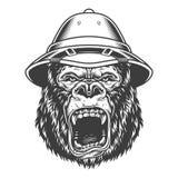 Ilsken gorilla i monokrom stil stock illustrationer