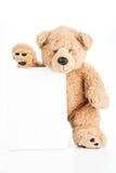 Ilsken nallebjörn som rymmer det tomma brädet Royaltyfri Foto