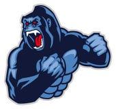 Ilsken stor gorilla Arkivfoton