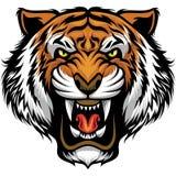 Ilsken tigerframsida stock illustrationer