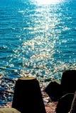 Ilskna blickar på havet Arkivfoton