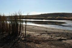 Ilskna blicken av solljus i det sista vattnet i den torra sjön Fotografering för Bildbyråer