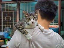 Ilskna Cat Carried av mannen royaltyfri foto