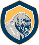 Ilskna Gorilla Head Shield Retro Arkivbilder