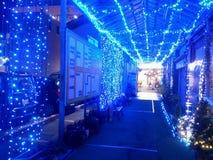 Iluminação azul do diodo emissor de luz Imagem de Stock