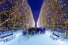 Iluminação bonita no parque público de Gdansk imagem de stock royalty free