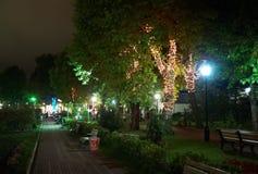 Iluminação da noite no parque cidade de Riviera, Sochi Fotografia de Stock Royalty Free