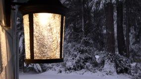 Iluminação decorativa de vidro no patamar na floresta do inverno video estoque