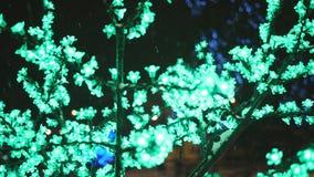 Iluminação do conceito do feriado do Natal sob a forma das flores de sakura no parque da cidade video estoque