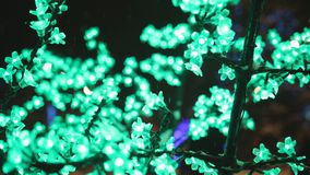 Iluminação do conceito do feriado do Natal sob a forma das flores de sakura no parque da cidade filme