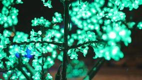 Iluminação do conceito do feriado do Natal sob a forma das flores de sakura no parque da cidade vídeos de arquivo