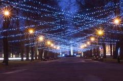 Iluminação do festão do ano novo e do Natal foto de stock royalty free