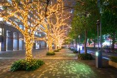 Iluminação do inverno no distrito de Shinjuku no Tóquio foto de stock royalty free