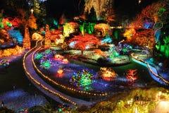 Iluminação do Natal do jardim Fotografia de Stock