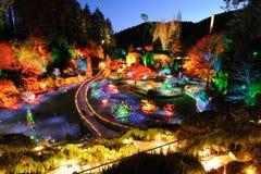 Iluminação do Natal do jardim Imagem de Stock Royalty Free
