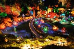 Iluminação do Natal do jardim Foto de Stock
