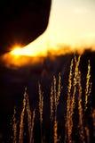 Iluminação do por do sol Foto de Stock