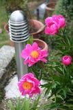 Iluminação do poste de amarração do jardim Imagem de Stock