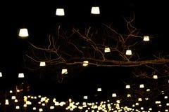 Iluminação na noite imagens de stock royalty free