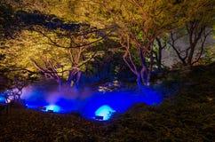 Iluminações sazonais no jardim de Rikugien fotografia de stock