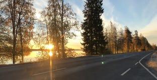 Iluminación brillante del horizonte antes de la salida del sol fotografía de archivo
