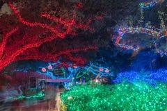 Iluminación de la celebración de la Navidad y del Año Nuevo en Houston, Tejas, U Fotos de archivo libres de regalías