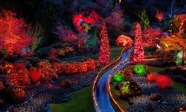 Iluminación de la noche de la Navidad en el jardín Imagen de archivo libre de regalías