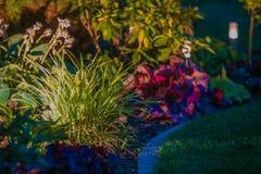Iluminación de la noche del jardín foto de archivo libre de regalías