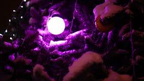 Iluminación en el CU del árbol de navidad metrajes