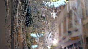 Iluminación festiva y decoraciones de la Navidad almacen de metraje de vídeo