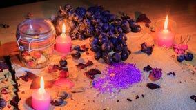 Iluminación hermosa de la fruta y de las flores Fotos de archivo