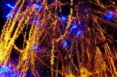 Iluminación hermosa del día de fiesta Fotografía de archivo