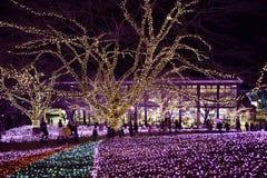 Iluminaciones del Año Nuevo en Japón Foto de archivo libre de regalías