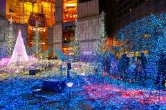Iluminacje zaświecają up przy Caretta zakupy centrum handlowym w Odaiba, Tokio Zdjęcia Royalty Free