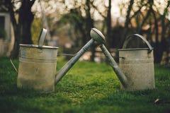 Iluminado feche acima da foto de latas molhando do vintage dois na grama verde no jardim no por do sol Latas molhando rurais e ve fotografia de stock