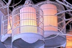 Iluminação da gaiola de pássaro Fotografia de Stock