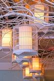 Iluminação da gaiola de pássaro Fotos de Stock Royalty Free