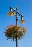 Iluminazione pubblica con i fiori sul fondo del cielo blu Fotografia Stock Libera da Diritti