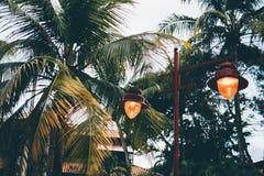 Iluminazione pubblica d'annata rossa con due lampade e palme Immagine Stock Libera da Diritti