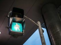 Iluminazione pubblica d'attraversamento della gente Immagine Stock