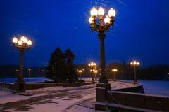 Iluminazioni pubbliche e strada nell'inverno alla notte Immagine Stock
