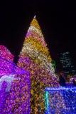 Ilumine acima a árvore de Natal para comemorar o Natal e o festival do ano novo Fotos de Stock