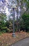 Ilumine o trajeto Foto de Stock Royalty Free