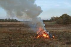 Iluminou o fogo da grama do outono no campo outono muita manutenção programada Fotografia de Stock Royalty Free